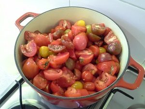 TomatoesInAPotHunterBackyardVeggieGrowers