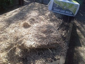 mulchspreadhunterbackyardveggiegrowers